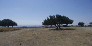 Земельный участок в районе Кония № 7800