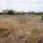 Земельный участок в Тала № 759